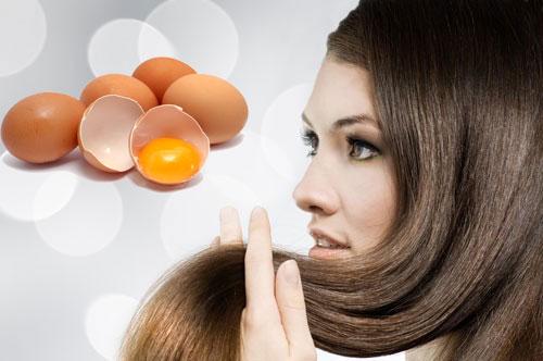 Trứng - Dành cho mọi loại tóc