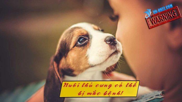 Nuôi thú cưng có thể nhiễm một số bệnh về ký sinh trùng