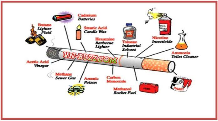 Tác hại của thuốc lá đối với sức khỏe con người